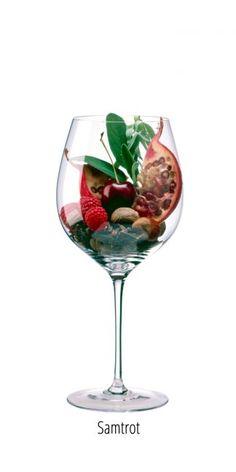 Wine Varietals, Wine Folly, Wine By The Glass, Vides, Port Wine, In Vino Veritas, Wine Tasting, Wine Rack, Vineyard