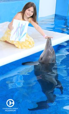 """Create your very own unique dolphin painting with our """"Paint With A Dolphin Program""""! With this program you get the chance to help Winter or one of our other resident dolphins express their creative side with this special enrichment session!"""