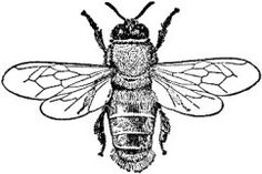 Amazon.com: Bee rubber stamp WM 1x1.25: Arts, Crafts & Sewing