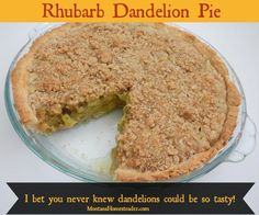 Rhubarb Dandelion pie recipe- I bet you never knew dandelions could be so tasty! |  Montana Homesteader