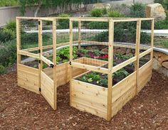 Love the fenced in raised bed. It would be perfect for keeping animals out (including the dogs)