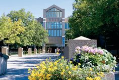 Mount Royal University - Calgary, AB Canadian Universities, Canada, The Province, Study Abroad, Calgary, Roots, Cities, University, College
