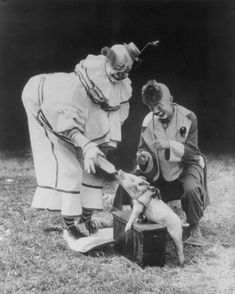 Clowns Feed Small Pig A Bottle 1930s 8x10 Reprint of Old Photo   eBay