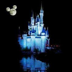 Cinderella's Castle ☆ Walt Disney World, Florida, USA