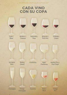 Beautiful Different Types Of Bar Glasses