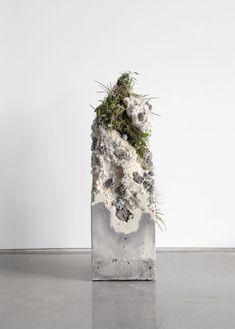 cement sculpture with plants Concrete Sculpture, Concrete Art, Concrete Projects, Sculpture Art, Art Concret, Beton Design, Australian Plants, Plant Species, Ikebana