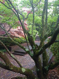 #zen #outdoors #nature #newengland #boston #zenlife #workinspiration #workinspo #business #officespace #workspace #greenery #woodwork #cabinetry #woodworking