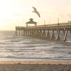 Deerfield Beach, Florida ~ Nestled on Florida's sun-soaked southeast coast between Miami and Palm Beach, Deerfield offers an understated break from the glitz and glamour cities along this stretch of coastline are known for. Laidback beach vibes rule here, and homes just a few block