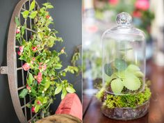 Flower and Herb Wedding Ideas Ruffled