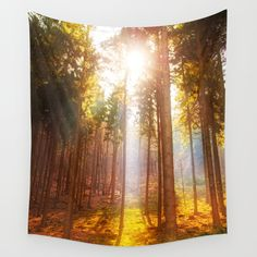 Sunshine forest Wall Tapestry Sales: 2 The morning sun is peeking through the pine trees on a hazy morning.   Nature, landscape, forest, pine, trees, sun, sunlight,sunbeams, sunrays,yellow