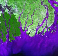 Фото Земли из космоса. Дельта реки Ганг