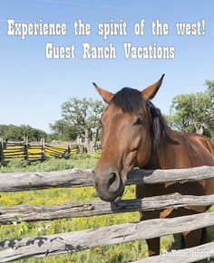 Wild West Style vacations on a working ranch are for those seeking refuge from the pressures and routine of modern life. No two guest ranch vacations are alike. Get our tips on the best dude ranches right at your finger tips.