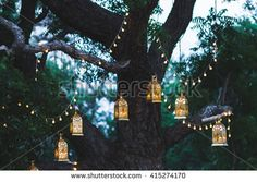 庭 夜 写真素材・ベクター・画像・イラスト | Shutterstock