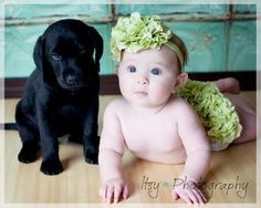 Diaper Cover Photo Prop Lime Green Hydrangea Petals on White Cotton Knit Diaper Cover Matching Headband Spring Easter