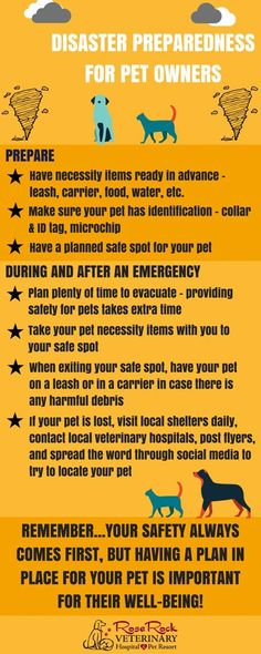 Severe weather season isn't over, so we wanted to provide some helpful tips for disaster preparedness with pets!