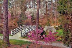Google Image Result for http://www.cityprofile.com/forum/attachments/north-carolina/24160-durham-sarah-p-duke-gardens1.jpg