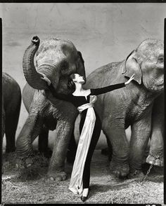 This image is one of my all time favorite photographs. Richard Avedon took this photograph and he is also one of my all time favorite photographers. It represents me because of my love for photography and fashion blended into one.