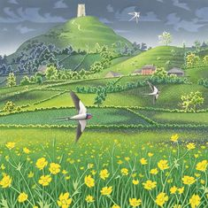 'Three Swallows' Glastonbury Tor, by Painter David Alderslade. Yearbook Covers, Yearbook Layouts, Yearbook Theme, Yearbook Spreads, Yearbook Design, Magazine Layout Design, Book Design Layout, Design Design, Graphic Design