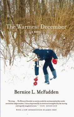 guiltless reading: The Warmest December by Bernice McFadden