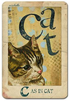 Vintage Flash Card ~ Cat