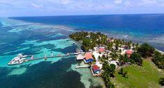 Top 5 Reasons to Book Blue Marlin Beach Resort
