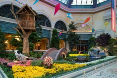 The famous conservatory at Bellagio Las #Vegas