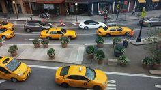 Chelsea, Manhattan, NY, NY, US