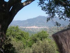 Castelbuono - come and see for yourself