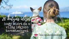 20 kutyás idézet, hogy miért ők a világ legjobb teremtményei - Rózsaszín szemüveg Dog Quotes, Watches, Pets, Blog, Wristwatches, Quotes For Dogs, Clocks, Blogging, Quotes About Dogs