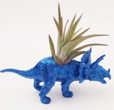 Small Dinosaur Planter with Air Plant, Tillandsia Animal Planter, Metallic Blue College Dorm Ornament Plants and Edibles