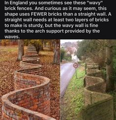 The More You Know, Good To Know, Did You Know, Brick Fence, Wtf Fun Facts, Random Facts, History Facts, Things To Know, Mind Blown