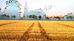 1 onderwerp:Kerk 2015 | Foto's Huizen en straten | MijnAlbum - Fotoalbum Gratis Online!