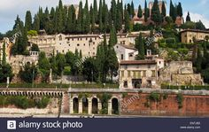 Image result for saint peter hill verona
