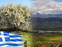 GREEN PLANET FREE: Eλιξήρια κατευθείαν από την ελληνική γη