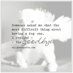 The Most Difficult Thing About Owning A Dog Pet Loss Quotes Dog Loss Quotes, Pet Quotes Dog, Animal Quotes, Losing A Dog Quotes, Dog Quotes Love, Cat Quotes, Dog Loss Poem, Dog Heaven Quotes, Life Quotes