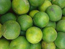 Citrus limetta - Sweet Lime