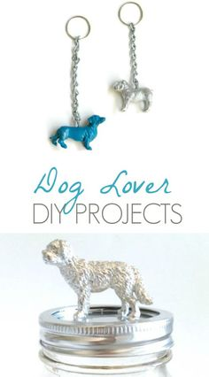 Dog Lover DIY Projects - LLVH