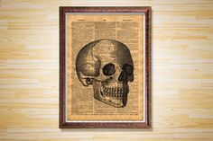 Hey, I found this really awesome Etsy listing at https://www.etsy.com/listing/226116692/anatomy-dictionary-page-skull-print