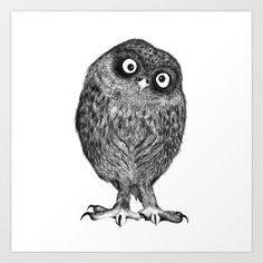 Owl Nr.4 illustration by Kriszti Balla #owl #illustration #krisztiballa #nature #ballpointpen #pen