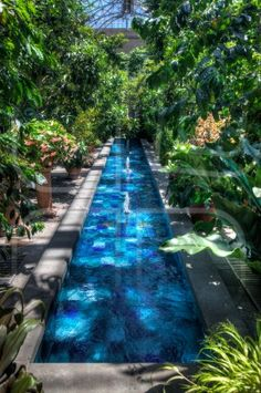 1000 images about spa pool tubs on pinterest grotto for Swimming pool greenhouse
