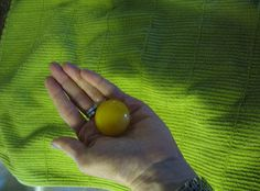 Tempera all'uovo - Egg tempera | PROJECTS