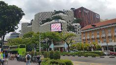 Povesti Din Calatorii: Călătorie în oraşul grădinilor - Singapore