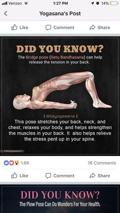Physical Fitness, Yoga Fitness, Fitness Tips, Health Tips, Health And Wellness, Health Fitness, Back Exercises, Stretching Exercises, Yoga Benefits