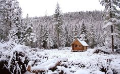 Tiny Cabin in Montana. I'd Like to Spend a Winter there...