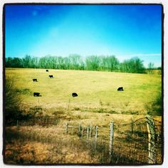 A view of the fields near Ryle High School. The Enquirer/Carrie Cochran