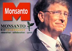 Bill Gates' Support of Monsanto Reveals Ending World Hunger is Not the Goal Bill Gates, Pseudo Science, Genetically Modified Food, World Hunger, World Population, Agra, Genetics, Cancer, Home