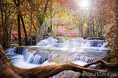 Photo about Sunset and beautiful scenic of waterfall in autumn forest. Image of park, fresh, nationl - 61323972 Autumn Forest, Vectors, Waterfall, Sign, Stock Photos, Sunset, Park, Free, Outdoor