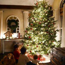 Christmas Lights at