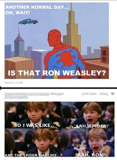 Because this combines Harry Potter, Spider Man, and The Amanda Show. Skill.