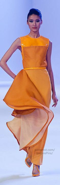 Stéphane Rolland Couture Haute Couture Spring 2014